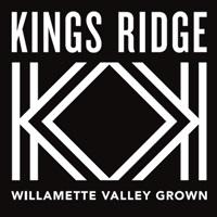 Kings Ridge Willamette Pinot Gris 2014