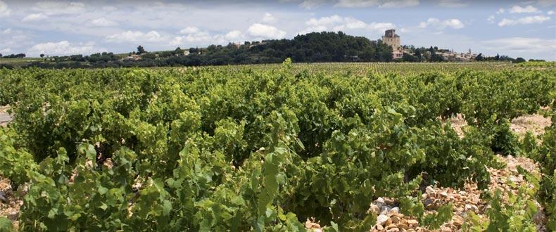 Charvin Cotes du Rhone Le Poutet 2015 1500mL